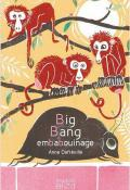 big bang embabouinage