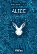 Alice - David Moitet - Livre jeunesse